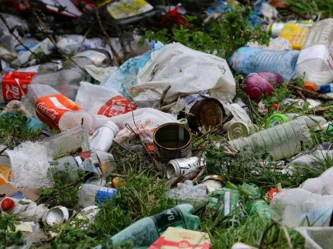 , Modern life is rubbish: we don't need all this packaging, The Circular Economy
