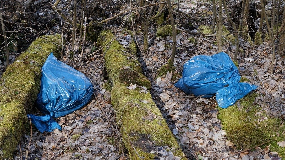, Opinion: Say No to Single Use Plastic Bags, The Circular Economy, The Circular Economy