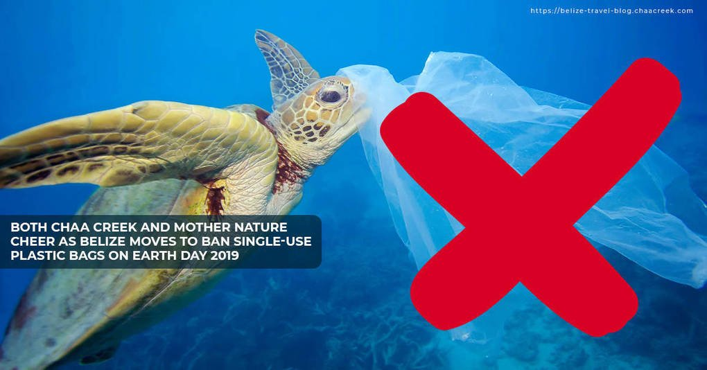 Both Chaa Creek & Mother Nature Cheer As Belize Moves To Ban Single-Use Plastic On Earth Day 2019, The Circular Economy