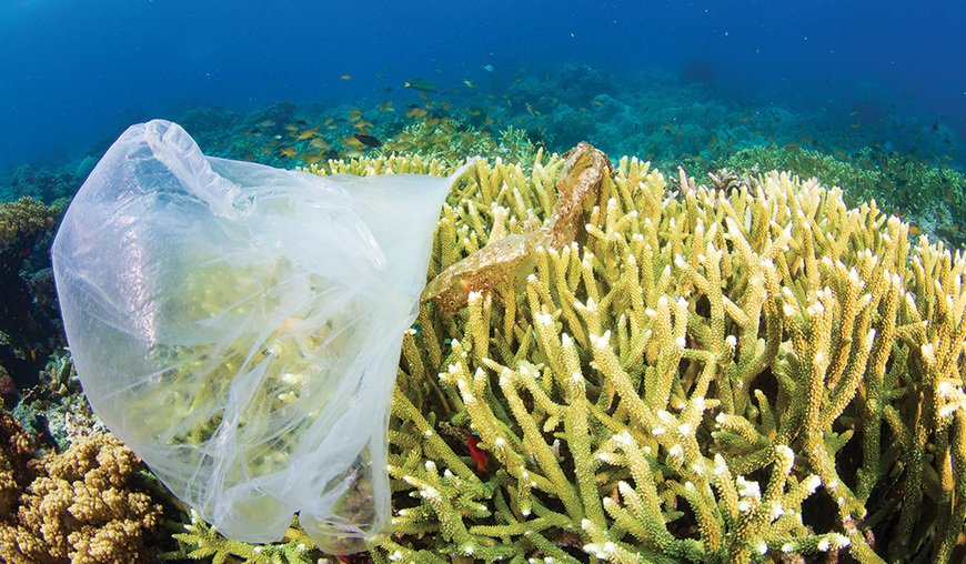 , Costa Rica, the first country to ban single-use plastic, The Circular Economy, The Circular Economy