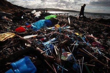 , Scotland 'leading the way' in tackling marine litter, says Nicola Sturgeon, The Circular Economy, The Circular Economy
