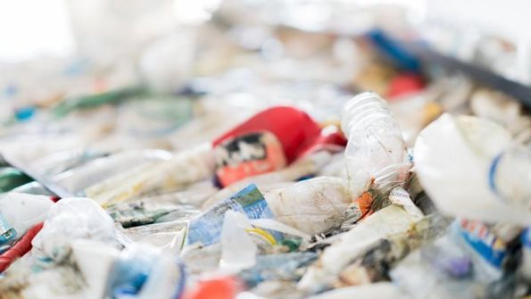 Single-use plastics: Days left to register for free online event