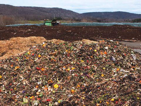 , The circular economy: turning organic waste into fertilizer, The Circular Economy, The Circular Economy