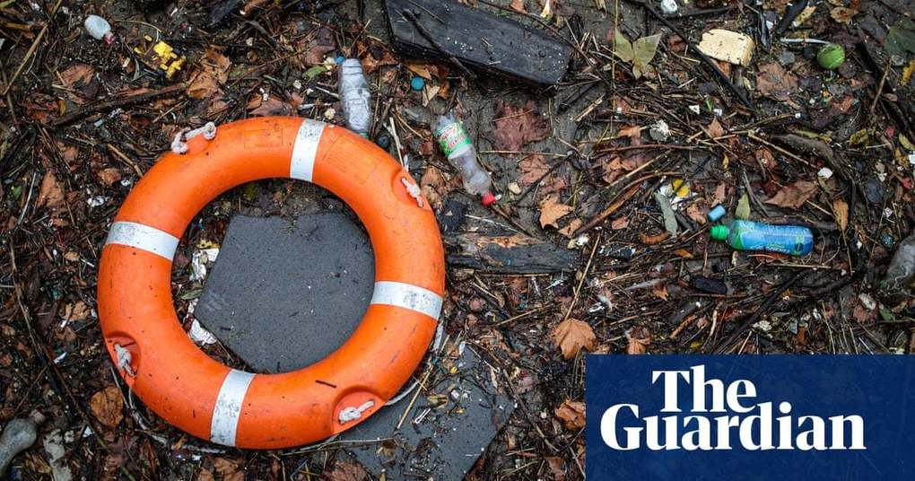 , 'Single-use' named 2018 word of the year | Books | The Guardian, The Circular Economy