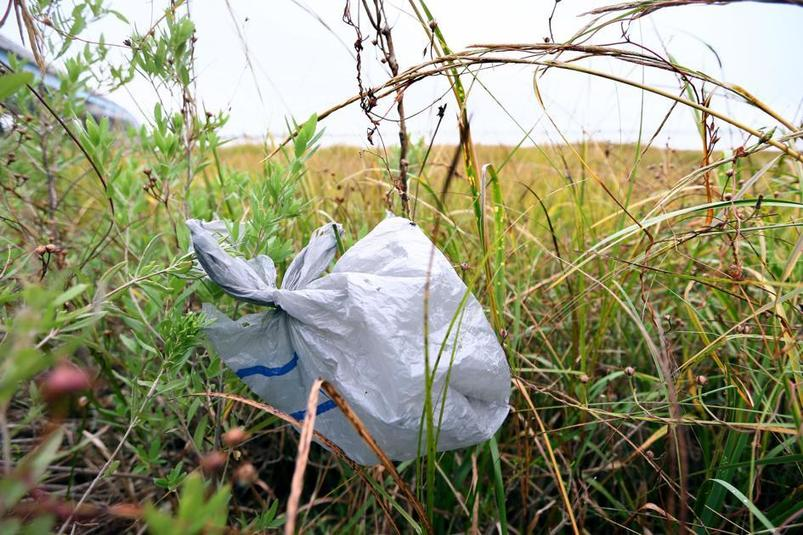, Town of James Island is on its way to banning single-use plastic bags, The Circular Economy