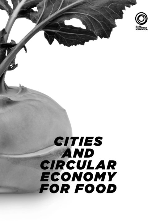 , Cities and Circular Economy for Food, The Circular Economy, The Circular Economy