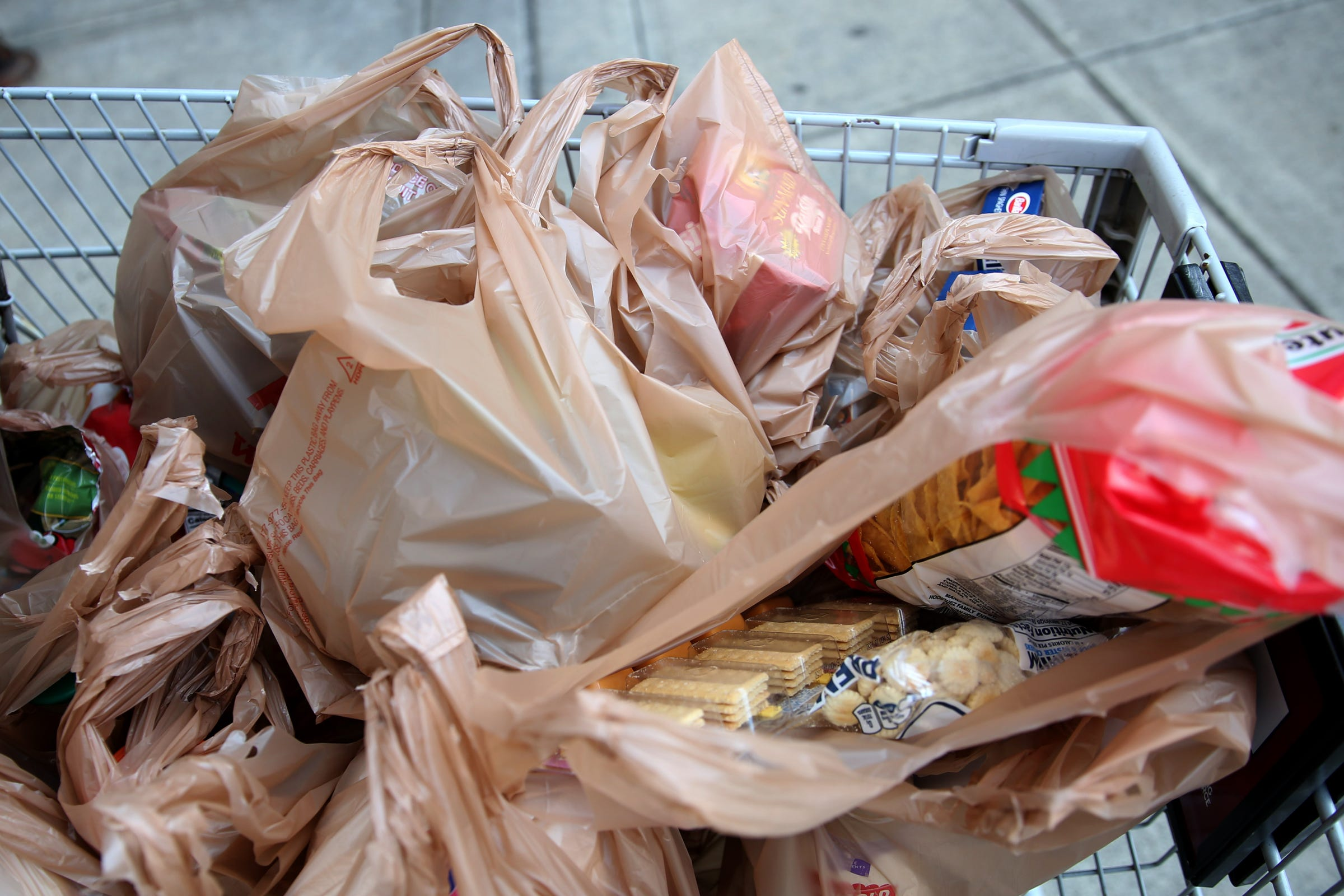 , Oregon considering statewide ban of single-use plastic bags, The Circular Economy, The Circular Economy