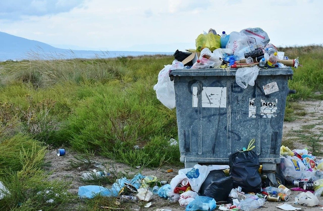 , Alternatives to single-use items to save the environment, The Circular Economy, The Circular Economy