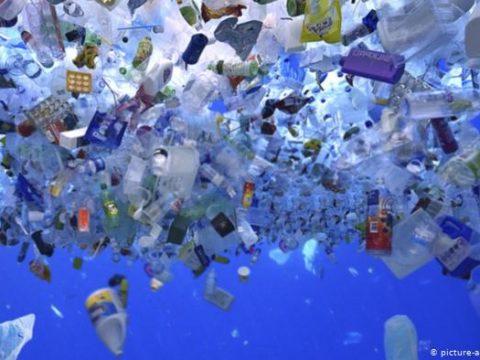 , European parliament votes to ban single-use plastics, The Circular Economy, The Circular Economy