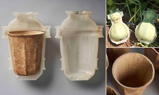 , The answer to single use coffee cups: Biodegradable 3D-printed mugs made from fruit waste | Daily, The Circular Economy, The Circular Economy