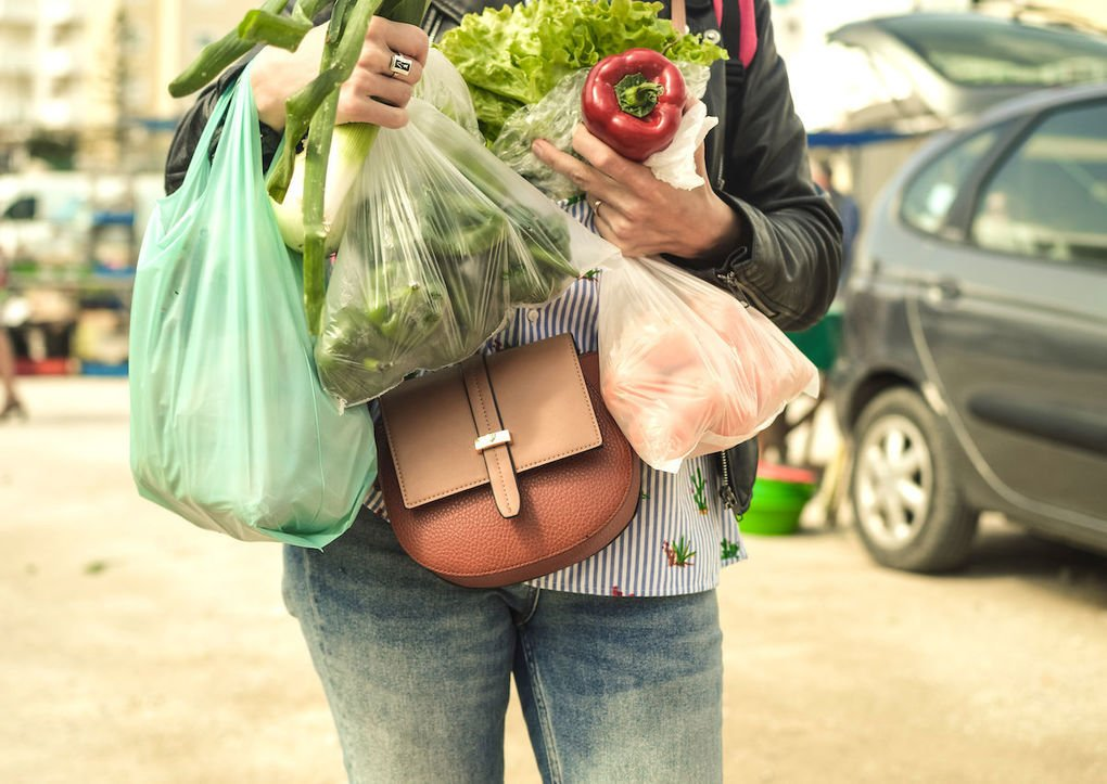 , New York banning single-use plastic bags, The Circular Economy, The Circular Economy