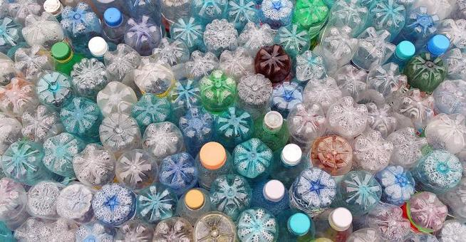 , Global Search Seeks Alternatives to Single-use Plastics, The Circular Economy