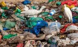 , The last straw: European parliament votes to ban single-use plastics, The Circular Economy