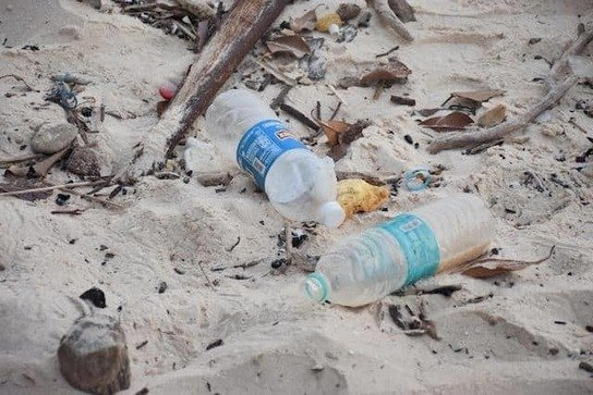 , European Parliament Resorts To Voting To Enforce Law For Banning Single-Use Plastic By 2021, The Circular Economy
