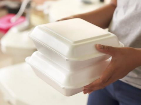 , Maine outlaws single-use Styrofoam, as first state to sign ban into law, The Circular Economy