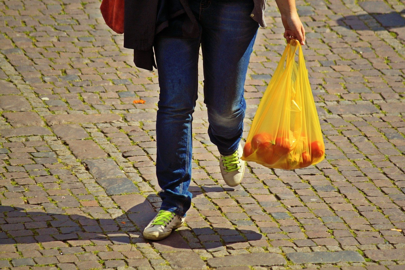 , New report finds that EU countries are behind in reducing single-use bags, The Circular Economy, The Circular Economy
