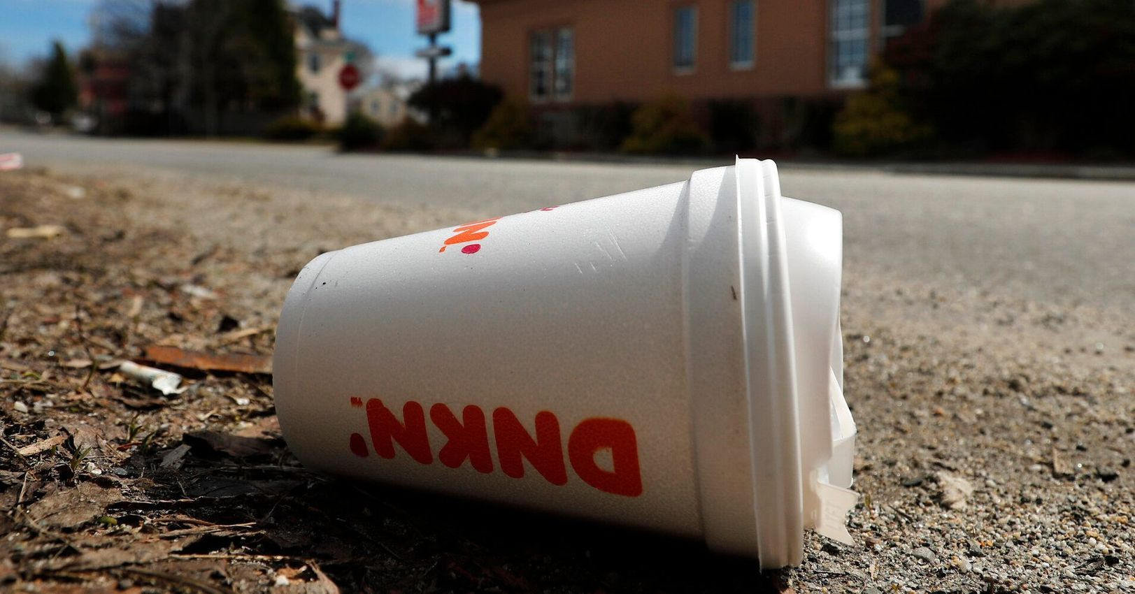 , Maine Becomes First State In America To Ban Single-Use Styrofoam Containers, The Circular Economy
