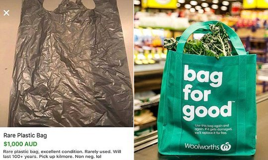 , Social media users sell plastic bags after NSW single-use plastic bag ban | Daily, The Circular Economy, The Circular Economy