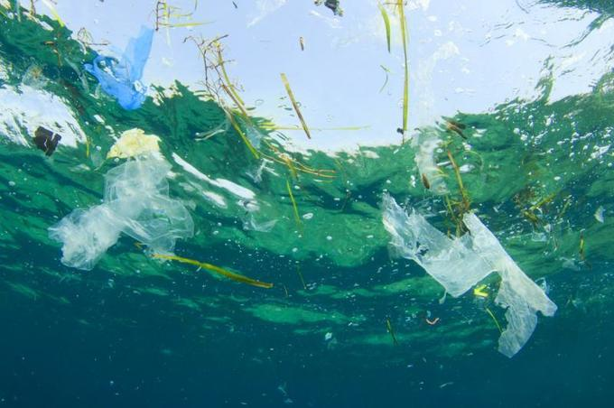 , European Parliament calls for single-use plastics ban by 2021 – UPI.com, The Circular Economy, The Circular Economy