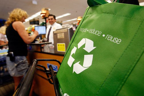 , Grocer Big Y to Phase Out Single-use Plastic Bags, The Circular Economy, The Circular Economy