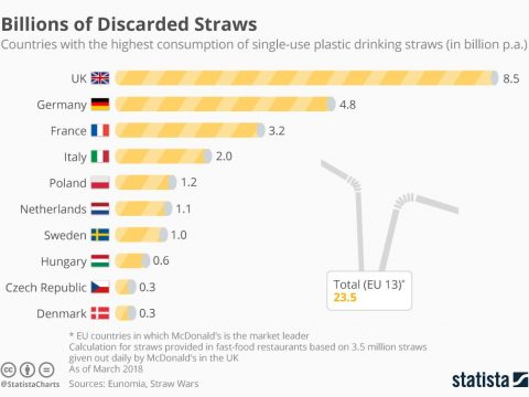 , Banning Single-Use Plastic Straws – is it a Sustainability Win?, The Circular Economy, The Circular Economy