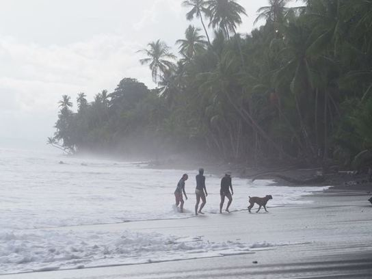 , A beach in Costa Rica is making me break up with single-use plastic | Fit City, The Circular Economy, The Circular Economy