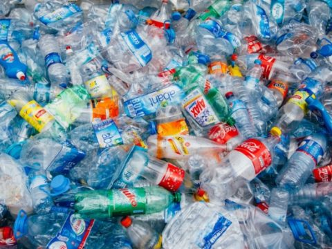 , One year on: How has WRAP's UK Plastics Pact changed corporate approaches to single-use plastic?, The Circular Economy, The Circular Economy