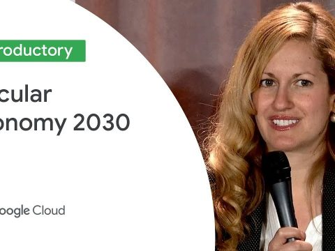 , Circular Economy 2030: Cloud Computing for a Sustainable Revolution (Cloud Next '19), The Circular Economy