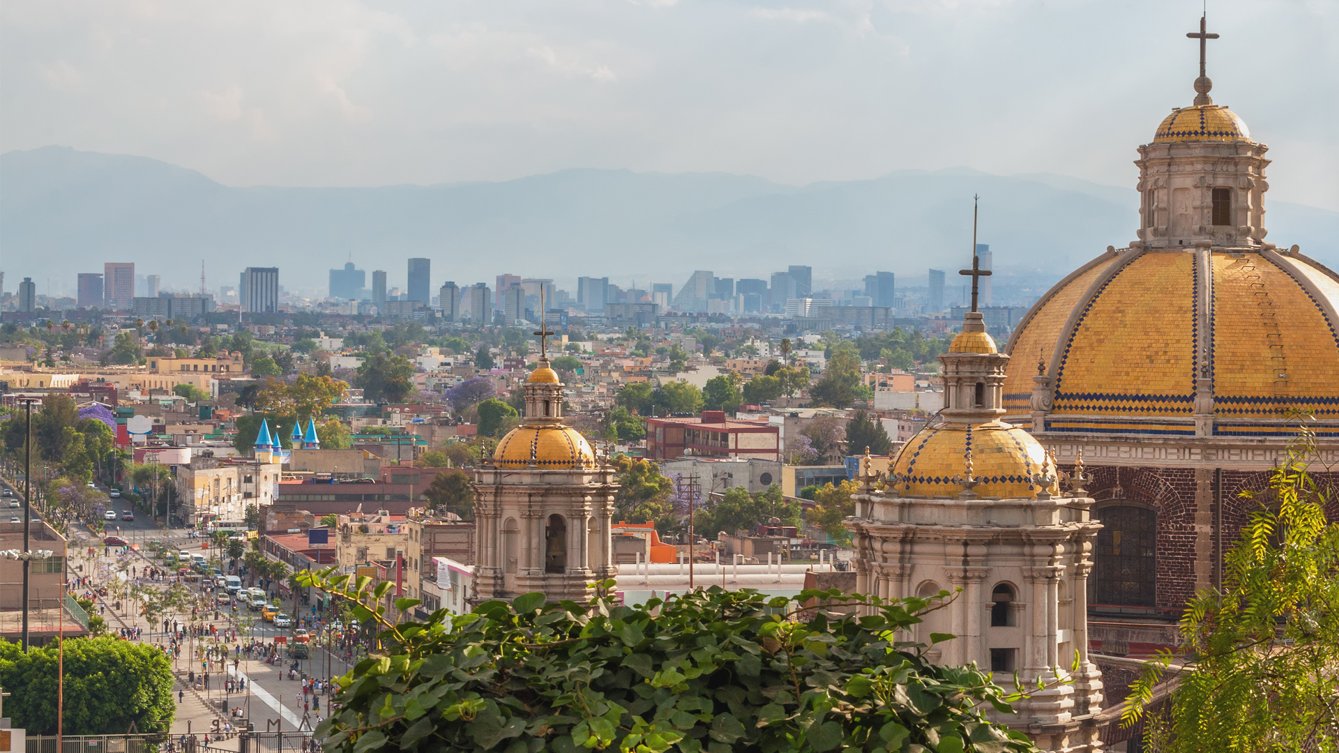, Circular Economy Mission to México, The Circular Economy, The Circular Economy