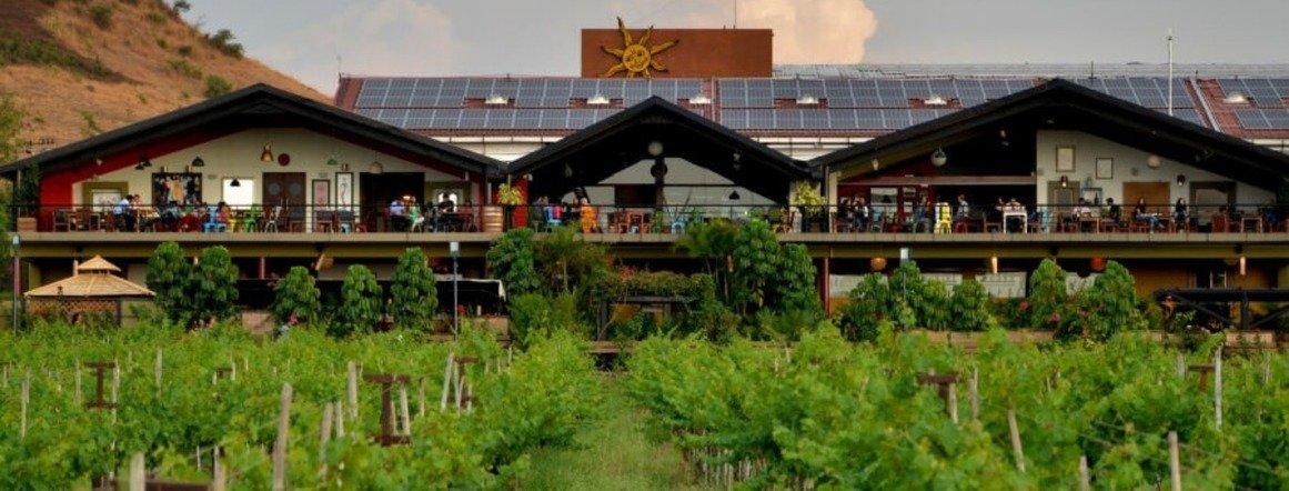 India's largest wine producer sustainability, The Circular Economy