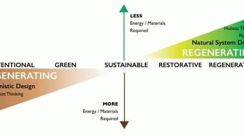 , Why sustainability is not enough, The Circular Economy, The Circular Economy