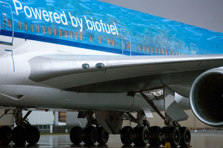 , KLM sustainability: How sustainable is flying for business?, The Circular Economy, The Circular Economy