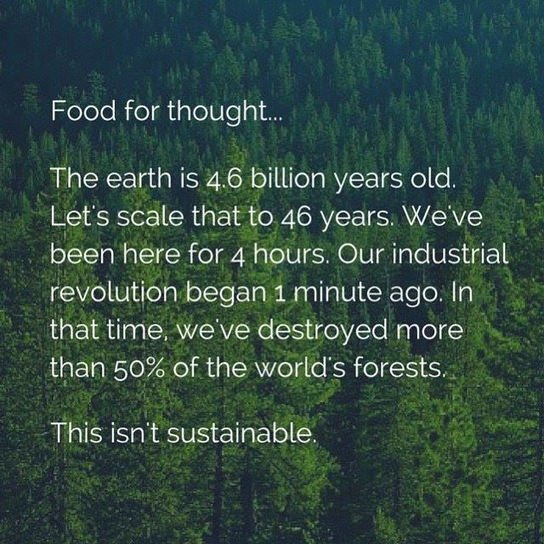 , Thought For The Day: Sustainability, The Circular Economy, The Circular Economy