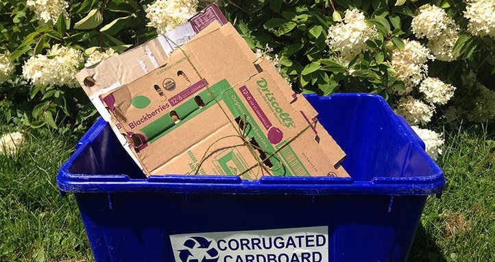 Ecommerce Packaging and the Sustainability Imperative, The Circular Economy