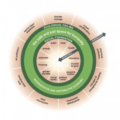 , The Amsterdam City Doughnut, The Circular Economy, The Circular Economy