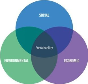 , Sustainability branding for business leaders, The Circular Economy, The Circular Economy