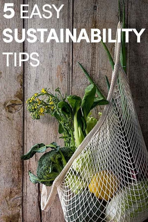 , 5 Easy Sustainability Tips, The Circular Economy, The Circular Economy