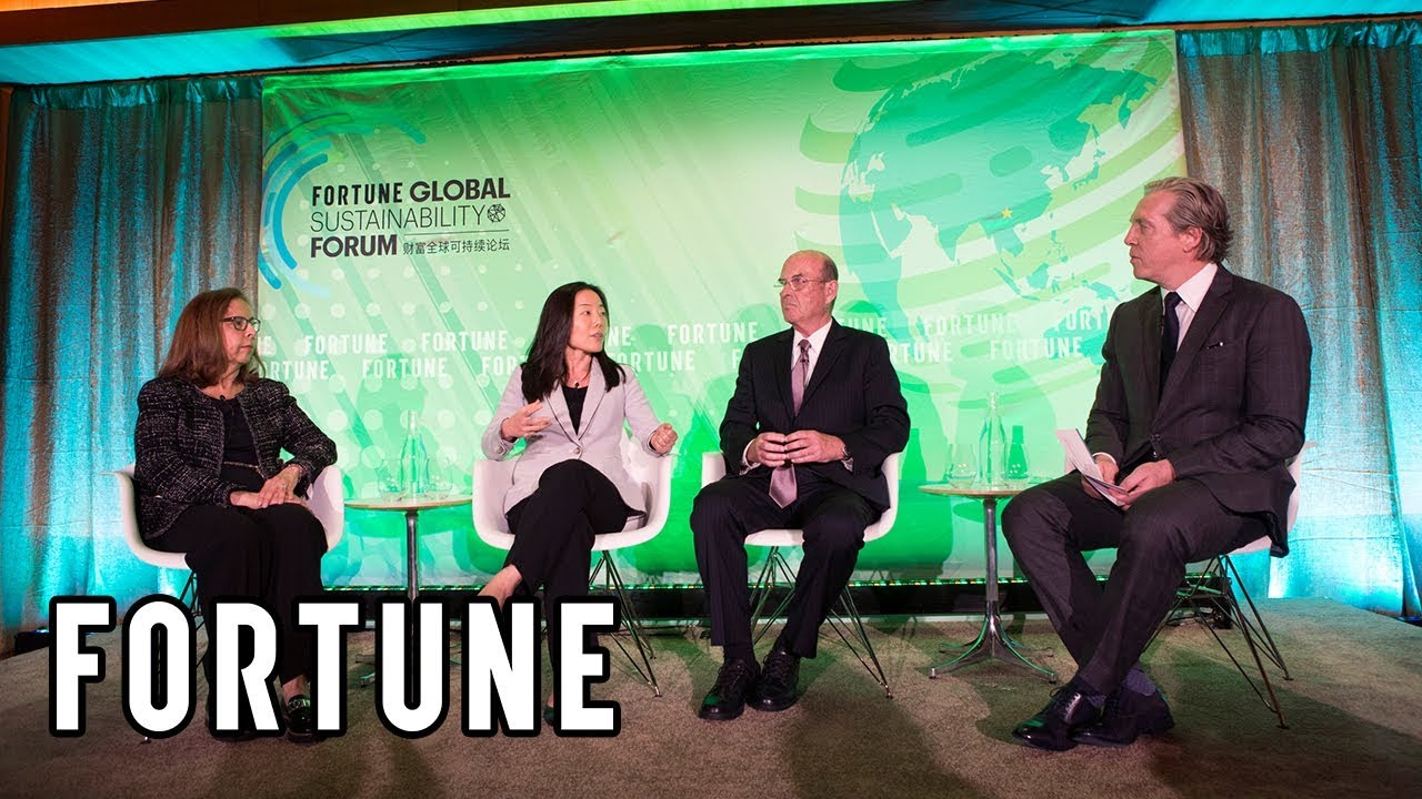, Fortune Global Sustainability Forum: What Is Capital's Role?, The Circular Economy, The Circular Economy