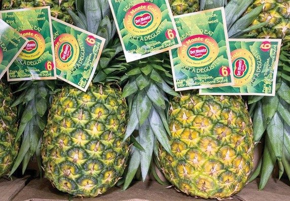 , Del Monte takes measure of sustainability progress, The Circular Economy, The Circular Economy