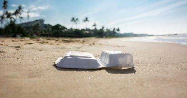 , Palm Beach, Florida bans single-use plastic bags and polystyrene containers, The Circular Economy, The Circular Economy