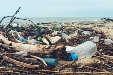 , Canada Plans to Ban Single-Use Plastic by 2021!, The Circular Economy, The Circular Economy