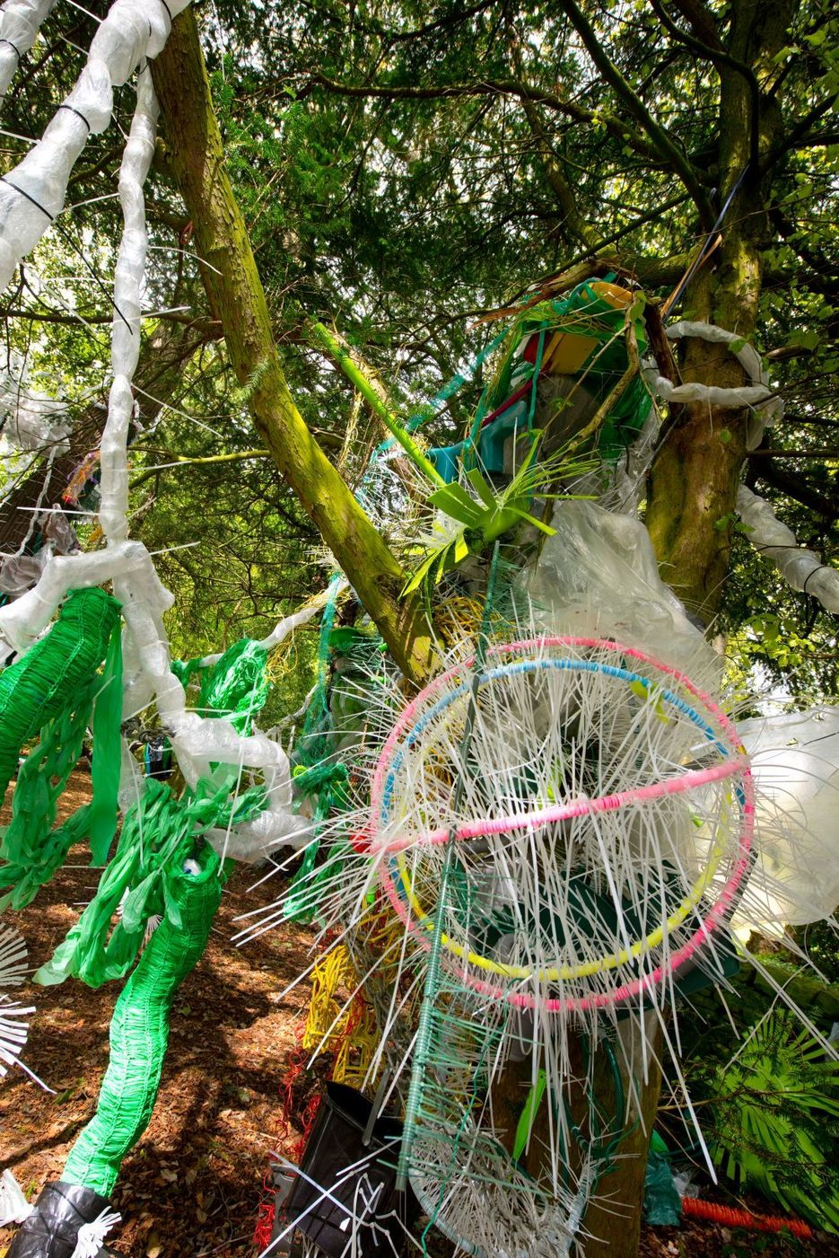 , Single-use plastic engulfs a pretty woodland in a new installation by artist Clare Townley, The Circular Economy