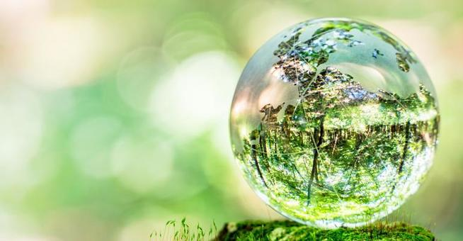 , Sustainability a Top Priority for Event Planners, The Circular Economy, The Circular Economy