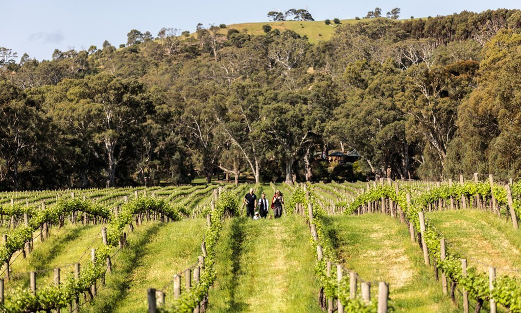 , McLaren Vale's green credentials drive wine industry sustainability, The Circular Economy