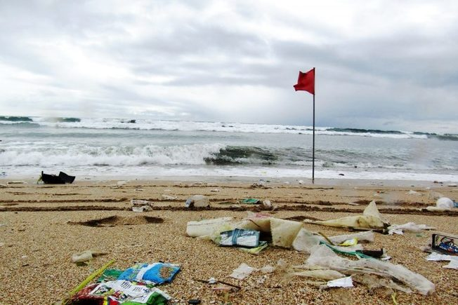 , In Indonesia, a court victory for Bali's ban on single-use plastics, The Circular Economy