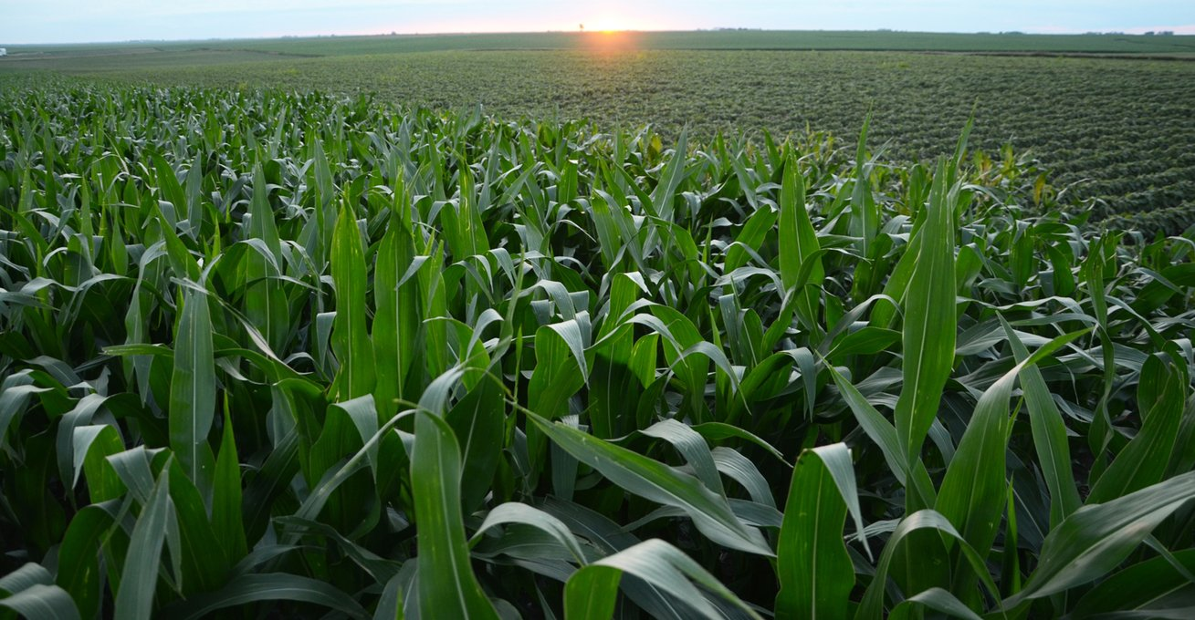 , Closer look at sustainability tool for agriculture, The Circular Economy