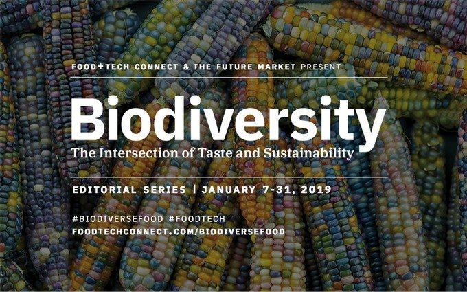 , Introducing Biodiversity: The Intersection of Taste & Sustainability, The Circular Economy