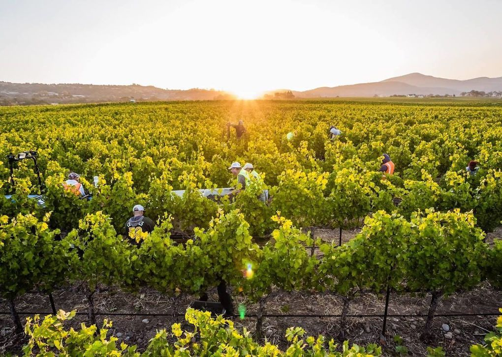 , How Sonoma, California wine country reached 100 percent sustainability, The Circular Economy, The Circular Economy