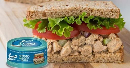 , Vegan Tuna Provides An Ocean Sustainability Solution, The Circular Economy, The Circular Economy
