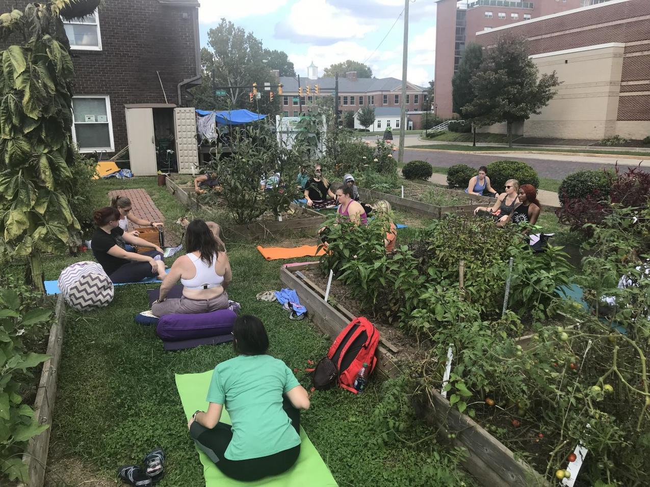 , Yoga in the Sustainability Garden connects students in nature, The Circular Economy, The Circular Economy